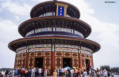 Himmelstempel # 048 # Leica R9 Fuji Provia100F - 2006 (irisisopen f/8light) Tags: china leica color colour film analog fuji slide farbe provia colorslide 100f diafilm positiv r9 irisisopen