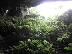 Guizhou China cave 3 () Tags: china asia caves cave  caving guizhou speleo cccp       cavem
