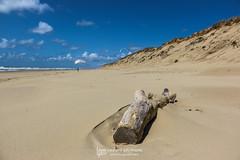IMG_9143 (Laurent Merle) Tags: beach fly outdoor dune cte vol paragliding soaring ozone plage parapente atlantique ocan glisse littlecloud spiruline