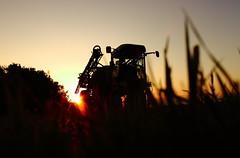 Sunset on the farm (Dave Harwood) Tags: sunset sun field countryside dusk farm country farming machinery crops farmer