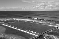 0D6A9681 (Stephen Baldwin Photography) Tags: newcastle australia nsw