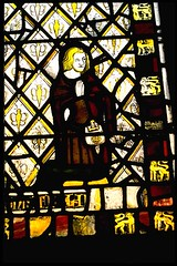 stained glass in St Denys church, York (Hipster Bookfairy) Tags: people church glass animals