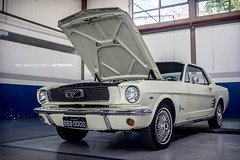 Mustang Hardtop bege 1966 (Thyago Barbosa Photography) Tags: classic ford hardtop muscles classiccar muscle 1966 classics mustang classiccars musclecar bege 14mustangmeeting2015 mueslcecars
