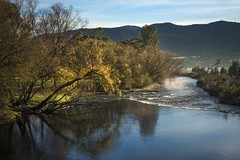 Kiewa River (phunnyfotos) Tags: phunnyfotos australia victoria vic northeastvictoria tawonga kiewavalley kiewariver river autumn willows reflections reflection nikon d750 nikond750 tawongabridge mist misty fog foggy weather