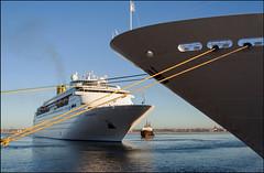 """Docking"" - Montevideo, Uruguay (TravelsWithDan) Tags: southamerica water river uruguay harbor boat ship tugboat tug montevideo cruiseships"