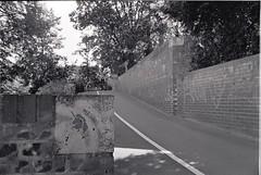 0028 (coloredsteel) Tags: street leica white black self 35mm graffiti stand kodak iso400 f14 trix rodinal developed m6 nokton trainspotting ulm voigtlnder developing trainwriting
