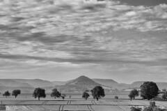 707,1 m . NHN (khausp) Tags: fotografie natur daily unterwegs alb schwbische schwarzweis pliezhausen postaday drnach