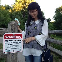 Beware of Coyote (WabbitWanderer) Tags: coyote park urban ontario london nature sign warning bog londonontario siftonbog sifton