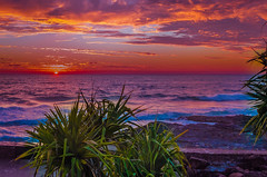 sunup gold coast australia (rod marshall) Tags: hermitage snapperrocks hermitagesnapperrocks pinksunrise oceansunrise goldcoastsunrise snapperrockssunrise