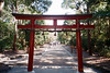 未标题-23 (UME2nd) Tags: fujifilm japan natura classica
