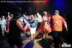 2016 Bosuil-Het publiek bij de 30th Anniversary Steady State 67