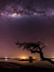 Milky Way above Island Point, Western Australia (inefekt69) Tags: island point mandurah collins pool milkyway cosmology southernhemisphere cosmos southern westernaustralia australia dslr long exposure rural night photography nikon stars astronomy space galaxy astrophotography outdoor milky way core great rift 13mm 1116mm tokina d5100 panorama stitched mosaic ice gnarly tree reflections water lake inlet nature atxpro wideangle silhouette small magellanic cloud landscape explore explored