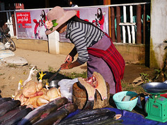 Fish Surgery, Kalaw Market (themanwithsalthair) Tags: market fish gutting kalaw burma myanmar knife