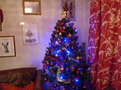 christmas 2011 016 (desmond nicholson2011) Tags: christmas2011