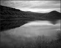 Romania. Tachihara 4x5, Symmar 135/5.6 (Yuriy Sanin) Tags: romania lake landscape blackandwhite bw sky reflection clouds bushes hills trees yuriy sanin largeformat 4x5 5x4 fp4