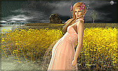 Roshan by Azul (MISS V ANDORRA 2016 - MISSVLA ARGENTINA 2017) Tags: laq azul astralia rezology landscape formalstyling formalgown gown hautecouture couture avatar avatars woman women secondlife sl designers fashion fashiontrend fashionindustry marketplace flickr mesh bodymesh headmesh maitreya hairs shopping beauty runway models topmodel modeling roxaanefyanucci lesclairsdelunedesecondlife lesclairsdelunederoxaane realevilindustries