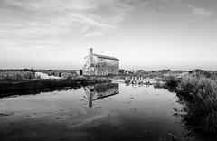 LIO PICCOLO. LAGUNA IN B&W. (FRANCO600D) Tags: liopiccolo jesolo treporti laguna mare maradriatico veneto casa pianura italia italy italie oasi cavallinotreporti isolotto canon eos600d sigma bw franco600d