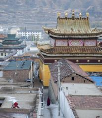 Rongwo monastery Rebgong-Tongren (newmansm) Tags: china tibet monastery amdo tongren rebgong rongwo