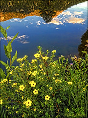 iPhone - Mountain Lake Reflection (danielgweidner) Tags: vacation mountains landscape colorado nik topaz iphone