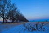 Prairie Farming (stevenbulman44) Tags: blue winter color tree calgary canon landscape tripod alberta gitzo 1740f40l
