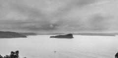West Point 2014-12_0017-Edit.jpg (travischauphotography) Tags: sydney australia lionisland natinalpark westheadlookout