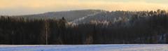 Christmas views_2014_12_26_0029m1 (FarmerJohnn) Tags: winter sun snow forest canon suomi finland countryside view sunny scene lumi talvi maisema mets laukaa aurinko maaseutu nkym aurinkoinen valkola canoneos7d anttospohja ef24105l40isusm