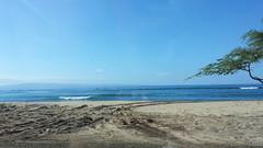 20141109_093329 (dntanderson) Tags: hawaii maui 2014 november09
