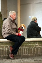 Spotter Dog (sasastro) Tags: people dog man candid streetphotography streettogs pentaxk5iis