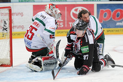 """DEL15 Kšlner Haie vs. Augsburg Panthers • <a style=""""font-size:0.8em;"""" href=""""http://www.flickr.com/photos/64442770@N03/15682397713/"""" target=""""_blank"""">View on Flickr</a>"""