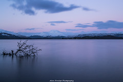 Winter Snow (Alan Dunlop Photography) Tags: winter sky snow mountains tree water scotland peaceful loch lomond lochlomand
