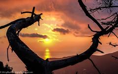 DSCF4115-Modifica-Modifica (gilbertotphotography.blogspot.com) Tags: autumn sunset sea italy sun italia tramonto mare liguria fujifilm cinqueterre sole monterosso autunno fujinon puntamesco levanto laspezia fujixm1 stradadeisantuari