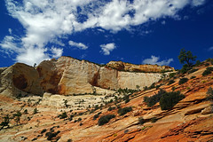 20140904_092a (mckenn39) Tags: nature nationalpark ut desert cliffs zionnationalpark