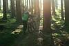Epic Autumn2 (jannis.dietrich) Tags: wood autumn people sun sunlight me forest downhill epic freeride specialized followme leatt troyleedesigns iamanikon iamspecialized epiclight