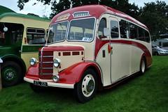 ETL221 (stamper104) Tags: old bus classic vintage bedford transport ob 1950 plaxton alltypesoftransport anykindofvehicles transportintheframe 2013shrewsburysteamrally