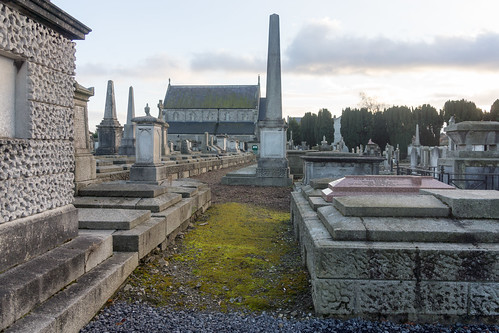 Mount Jerome Cemetery & Crematorium is situated in Harold's Cross Ref-100480