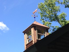 IMG_2470 (moonfever0) Tags: cat cupola weathervane iphone 2014