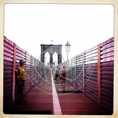 NEWYORK-1389