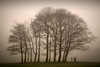 people in the park....... (Digital Diary........) Tags: uk mist fog mood atmosphere sthelens merseyside sherdley sherdleypark