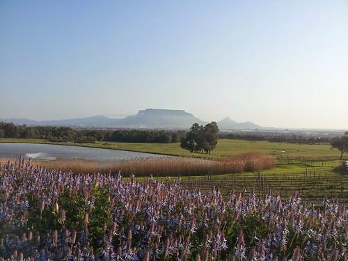 Autour du Cap, Afrique du Sud