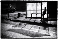 Day #2555 (cazphoto.co.uk) Tags: monochrome mono shadows busstop contrejour filmnoir galleywood project365 canoneos100d beyond2192 291214 canon18135mmeff3556isstm busshelterfilter