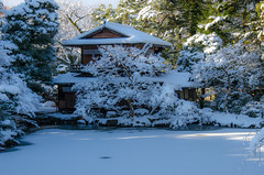 Shusui-Tei with snow (Kyoto Gosho) /  (Kaoru Honda) Tags: city morning winter snow nature japan landscape japanese nikon kyoto traditional             kyotogosho   shusuitei d7000