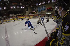 150109-Z-MW427-297 (U.S. Army Alaska) Tags: hockey alaska anchorage usairforce usarmy alcom pacaf sullivanarena alaskanationalguard jber usarak jointbaseelmendorfrichardson 2015armyvsairforcehockeygame