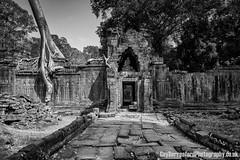 Angkor Wat (GuyBerresfordPhotography.co.uk) Tags: travel tree tourism window stone temple grey ruins asia cambodia southeastasia khmer buddhist ruin angkorwat tourist bark temples paving blocks root siemreap hindu tombraider indianajones treeroots slabs raidersofthelostark prakhan pragkhan