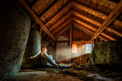 Enlightenment at fathers day (FAM Martin Z) Tags: wood morning light portrait horse sun barn self work bavaria early spring day ray glow father illumination goat after rays hay bale stable runway fathers faters enlightened allgu schwaben irsee ablazed canon5dsr 5dsr