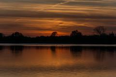swallows (stevefge (away travelling)) Tags: sunset red sky water netherlands evening sundown nederland weurt grindgat reflectyourworld
