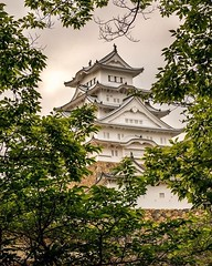 Frame of Leaves (oliverrshead) Tags: travel trees tree castle beautiful leaves japan clouds canon square landscape explore squareformat frame himeji samurai landscapephotography 70d iphoneography instagramapp