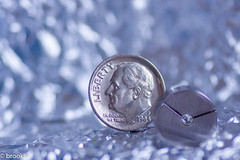 Macro Mondays: Smaller than a coin (brookis-photography) Tags: metal silver liberty coin steel jewelry jewellery dime uscoin