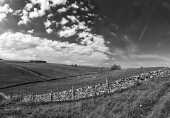 Tansley Dale (l4ts) Tags: landscape blackwhite derbyshire peakdistrict cloudscape drystonewalls cressbrookdale whitepeak tansleydale derbyshiredalesnationalnaturereserve britnatparks cressbrookdalenationalnaturereserve