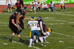 GFL-2016-Panther-9948.jpg (sgh-fotos) Tags: football nfl bowl german panthers sack dsseldorf touchdown defence invaders hildesheim dline fumble gfl amarican quaterback oline interception ofence