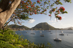 Baie des Saintes (JR-pharma) Tags: west classic canon french island eos 1 mark tropical 5d canon5d caribbean tamron mk saintes guadeloupe antilles lessaintes cocotier indies gwada 971 cocotiers le carabes caraibes westindies 1735 frenchwestindies tamron1735 fwi karukera tropiques antillas lesserantilles i f284 terredehaut antillesfrancaises 5dmark1 karukra